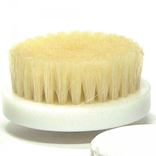 brush, large , 60mm (2.36 in)